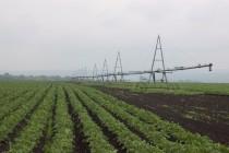 О состоянии и использовании мелиорированных земель в 2013 году