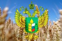 Животноводы Челябинской области обменялись опытом эффективной работы