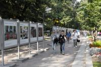 О профессиональном образовании в России расскажет фотовыставка под открытым небом