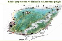 Реконструкция двух крупных тюменских лесопарков завершится в этом году