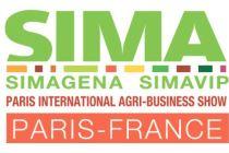 Еще более глобальная SIMA 2019