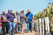 Corteva Agriscience обучила инновациям более тысячи российских фермеров