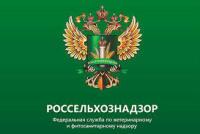 На Ямале предпринимателю назначен штраф  за нарушение ветеринарных правил